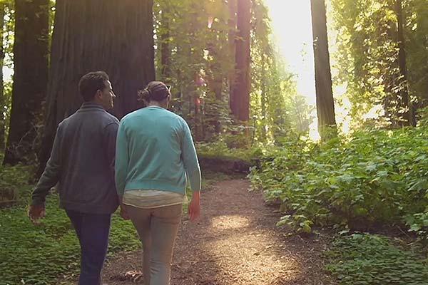 Redwood Coast Things To Do 2 Eureka California